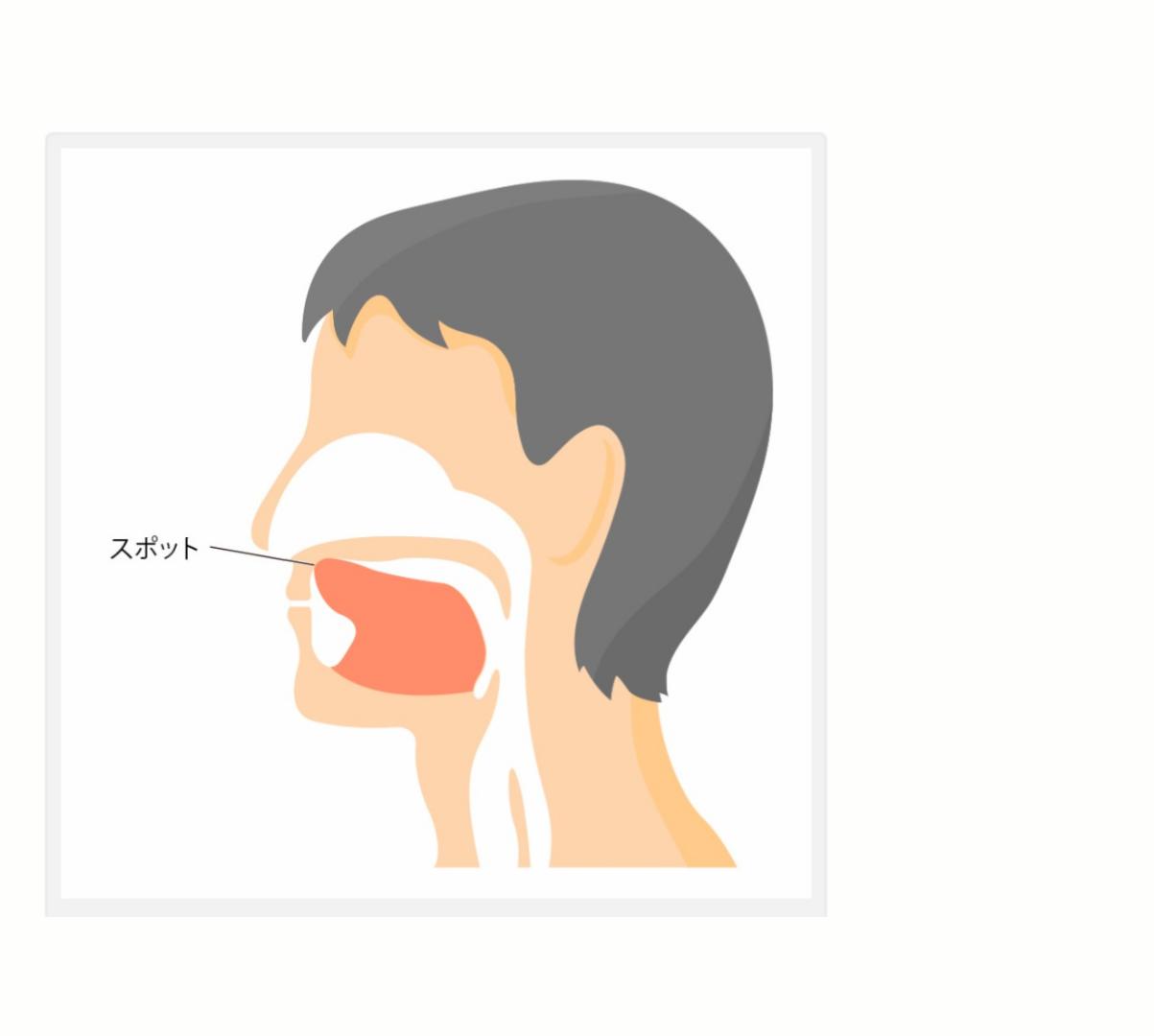 舌の正しい位置